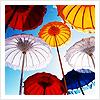 sunnysky-umbrellas